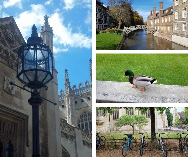 Sights & Highlights Tour of Cambridge