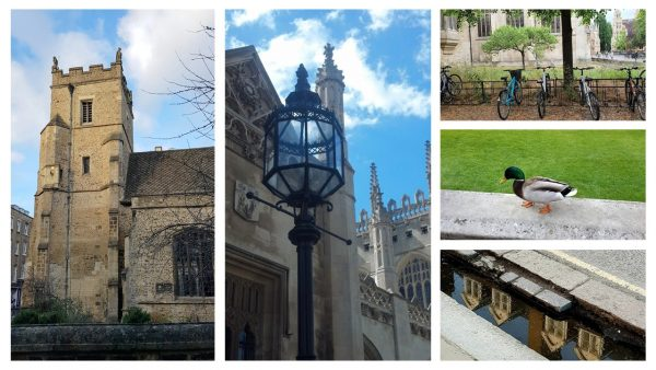 Sightseeing tour of Cambridge: a few images of Cambridge sights
